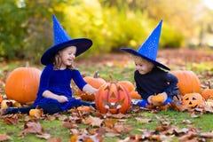 Дети с тыквами в костюмах хеллоуина Стоковые Фотографии RF