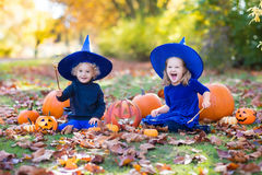 Дети с тыквами в костюмах хеллоуина Стоковое Фото