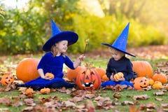 Дети с тыквами в костюмах хеллоуина Стоковое фото RF