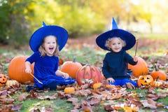 Дети с тыквами в костюмах хеллоуина Стоковая Фотография RF