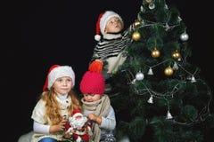 Дети украшают рождественскую елку в комнате Стоковые Фото