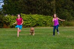 Дети участвуя в гонке собака Стоковая Фотография RF
