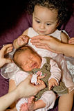 дети фотографируя детенышей стоковое фото rf