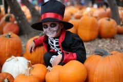 Дети хеллоуина, дети Стоковое Фото