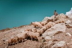 Детский труд - ребенок чабана сидя на утесе горы стоковые изображения rf