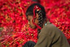 Детский труд Стоковые Фото