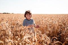 Детство в поле Стоковые Фото