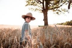 Детство в поле Стоковые Фотографии RF