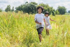 2 дет бежать в рисовых полях играть потеху в лете t Стоковое фото RF
