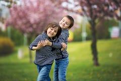 2 дет, братья, воюя в парке Стоковые Изображения