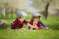 2 дет, братья мальчика, читая книгу и есть strawberri Стоковое Фото