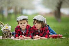 2 дет, братья мальчика, читая книгу и есть strawberri Стоковые Изображения RF