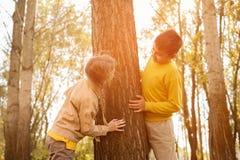 2 дет в парке Стоковое Изображение