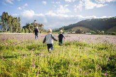 3 дет, который побежали через поле розовых цветков Стоковое Изображение RF