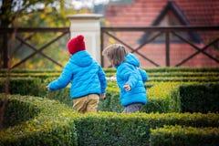 2 дет, мальчики, бежать счастливо в лабиринте в парке Стоковое Фото