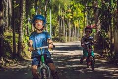 2 дет мальчиков имея потеху на велосипеде баланса на стране Стоковые Фотографии RF