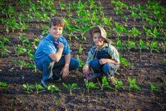 2 дет сидя с лопаткоулавливателем на зеленом поле Стоковые Изображения RF