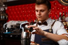 Деятельность бармена Стоковые Фото