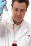 деятельность научного работника лаборатории Стоковое Изображение