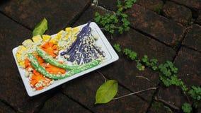Деятельность при искусства скульптуры овоща установленного Jap тэмпуры глины прессформы Стоковые Изображения RF