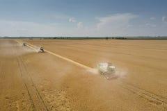 деятельность пшеницы жатки поля зернокомбайна Жатка зернокомбайна Ae Стоковые Фото
