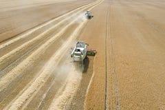 деятельность пшеницы жатки поля зернокомбайна Жатка зернокомбайна Ae Стоковое Фото