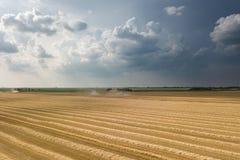 деятельность пшеницы жатки поля зернокомбайна Жатка зернокомбайна Ae Стоковые Изображения