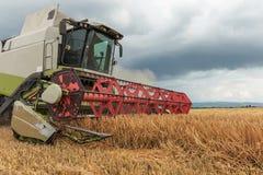 деятельность пшеницы жатки поля зернокомбайна Сбор пшеницы Стоковые Фото