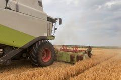 деятельность пшеницы жатки поля зернокомбайна Сбор пшеницы Стоковые Изображения RF