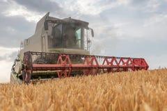 деятельность пшеницы жатки поля зернокомбайна Сбор пшеницы Стоковое Изображение