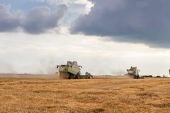 деятельность пшеницы жатки поля зернокомбайна Сбор пшеницы Стоковое Фото