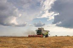 деятельность пшеницы жатки поля зернокомбайна Сбор пшеницы Стоковая Фотография RF