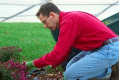 деятельность человека садовника Стоковая Фотография