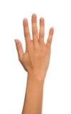 Деланные маникюр пальцы 5 жеста рукой женщины открытые вверх я Стоковая Фотография