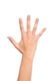 Деланные маникюр пальцы 5 жеста рукой женщины открытые вверх Стоковое Фото