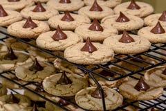 Делать из печений арахисового масла Стоковая Фотография RF