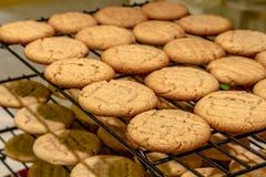 Делать из печений арахисового масла Стоковая Фотография