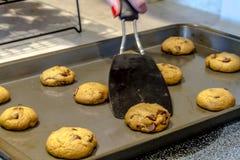Делать из печений обломока шоколада Стоковое фото RF