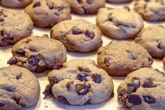 Делать из печений обломока шоколада Стоковая Фотография RF