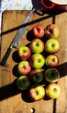 Делать applesauce от органических яблок McIntosh Стоковое Изображение