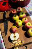 Делать applesauce от органических яблок McIntosh Стоковые Изображения RF