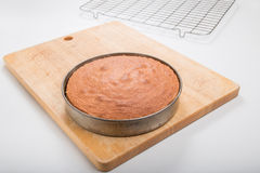 Делающ торты губки, сваренный торт внутри все еще в олове Стоковое фото RF