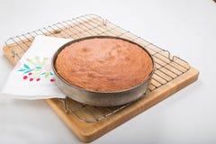 Делающ торты губки, сваренный торт внутри все еще в олове Стоковое Изображение