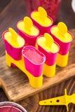 Делающ popsicles плодоовощ ягоды дома Стоковое фото RF