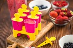 Делающ popsicles плодоовощ ягоды дома Стоковое Фото