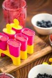 Делающ popsicles плодоовощ ягоды дома Стоковые Изображения