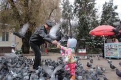 Дед и внучка подавая птицы в Алма-Ате в Казахстане Стоковое Фото
