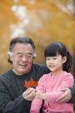 Дед и внучка усмехаясь и смотря лист совместно Стоковое фото RF