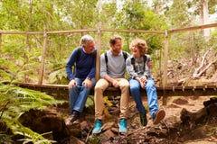 Дед, отец и сын сидя на мосте в лесе стоковое изображение