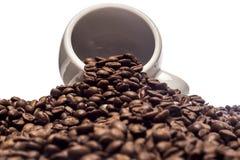 Дело кофе Стоковая Фотография